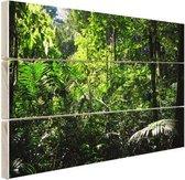 Regenwoud Brazilie  Hout 60x40 cm - Foto print op Hout (Wanddecoratie)