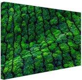 Theeplantages India Canvas 120x80 cm - Foto print op Canvas schilderij (Wanddecoratie woonkamer / slaapkamer)