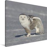 Sneeuwuil rekt zich uit in de sneeuw Canvas 160x120 cm - Foto print op Canvas schilderij (Wanddecoratie woonkamer / slaapkamer) XXL / Groot formaat!