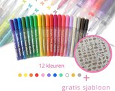 Acryl stiften 0.7mm tip - incl. GRATIS Sjabloon - Stiften-  Markers - Verfstiften - Acrylverf - Acrylstiften - Happy Stones - Stenen schilderen - Tekenset - 12 Kleuren