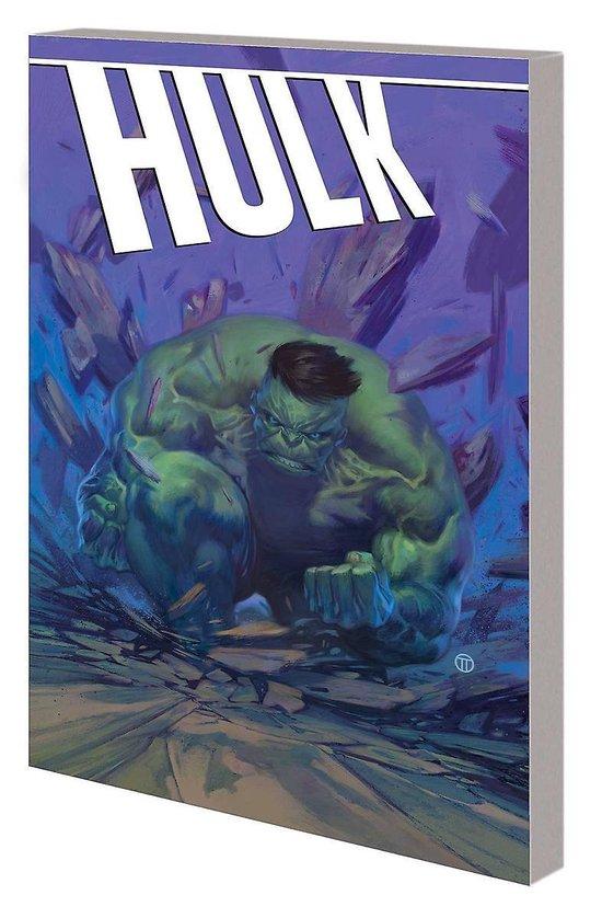 Boek cover Hulk van Fred Van Lente (Paperback)
