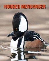 Hooded Merganser