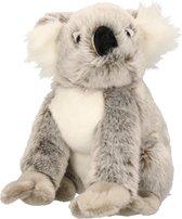 Pluche knuffel koala 22 cm - Multi