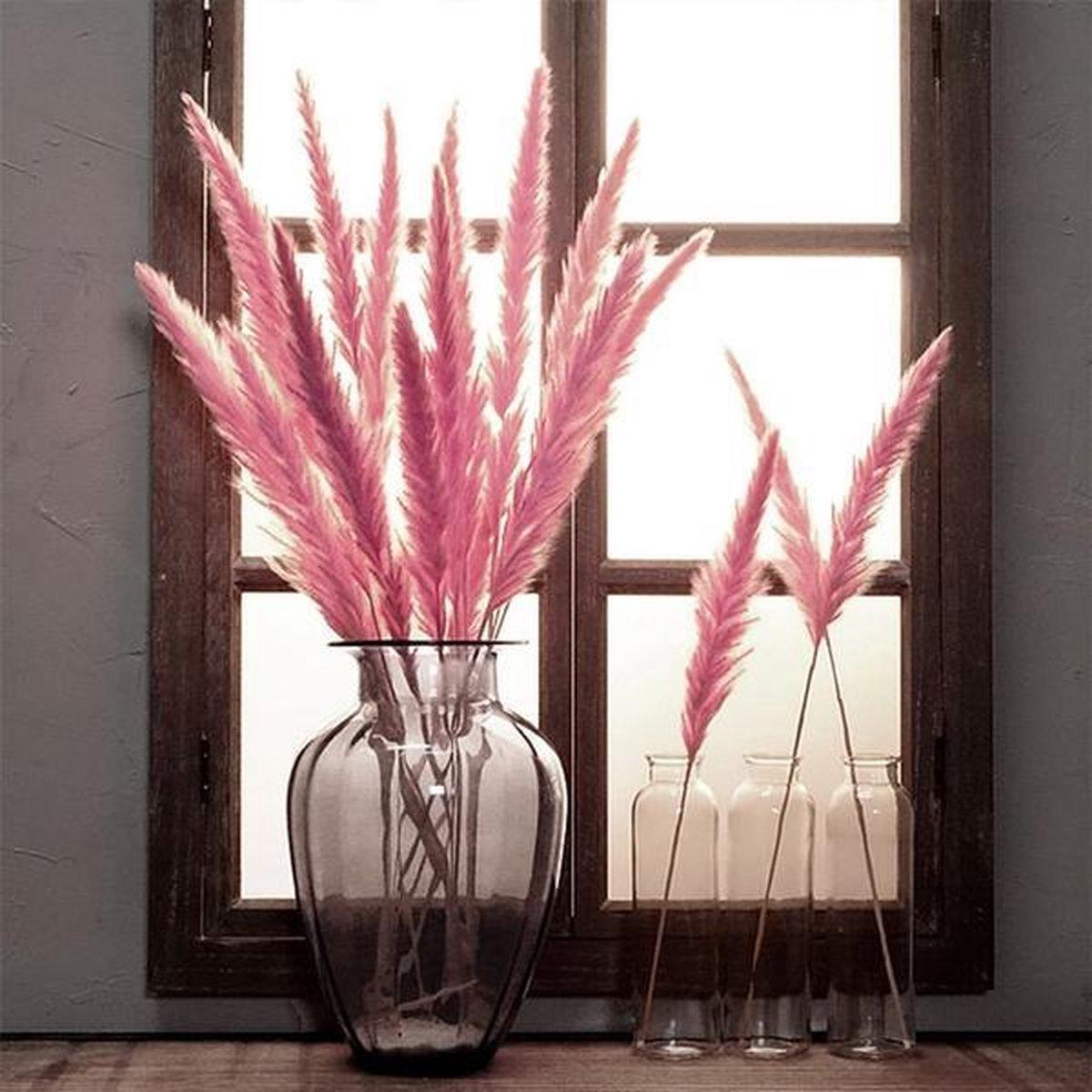 Pampas Pluimen Roze   Natuurlijke Tint - 15 stuks   Pampas Gras   70 cm   Droogbloemen   Cortaderia