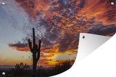 Tuinposter - Zonsondergang met een saguaro cactus - 180x120 cm - XXL