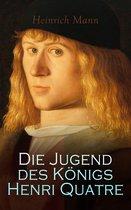 Boek cover Die Jugend des Königs Henri Quatre van Heinrich Mann