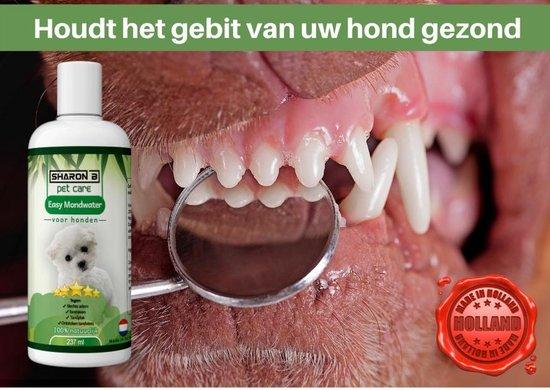easy mondwater - voor honden - 100% natuurlijk - 237 ml - tegen stinkende adem - verhelpt tandvleesproblemen - tegen tandplak - gebitsverzorging bij honden