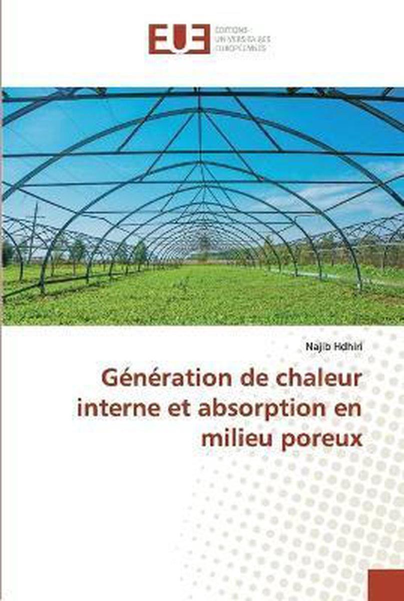 Generation de chaleur interne et absorption en milieu poreux