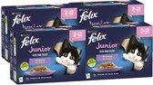 Felix Elke Dag Feest Mix Selectie in Gelei Junior - Kattenvoer - 48 x 85g