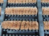 Rubberen deurmat met kokos borstels - 40 x 60 cm