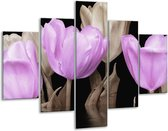Glasschilderij Tulpen | Paars, Grijs | 100x70cm 5Luik | Foto print op Glas |  F002862