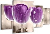 Canvas schilderij Tulp | Paars, Wit | 160x90cm 4Luik