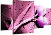 Canvas schilderij Tulp | Paars, Wit, Zwart | 160x90cm 4Luik