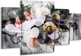 Canvas schilderij Orchidee | Wit, Grijs | 160x90cm 4Luik