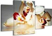Canvas schilderij Orchidee | Wit, Grijs, Rood | 160x90cm 4Luik