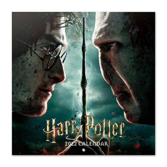 Harry Potter kalender 2022 - J.K. Rowling - Ron - Hermelien - Voldemort - formaat 30 x 30 cm