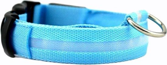 Halsband LED Maat XL 42 - 56 cm USB Oplaadbaar Hondenhalsband Puppy Riem - Blauw Waterbestendig Hond Dog Kat Kitten Cat - Dutchwide®