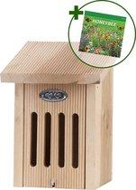 Esschert Vlinderkast in cadeaudoos + Somers Honeybee zaden