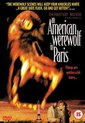 An American Werewolf In Paris  ( Import)