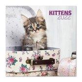 Poezen kalender 2022-katten-kittens-puppies-formaat 30 x 30 cm
