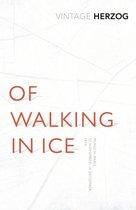 Of Walking In Ice: Munich - Paris