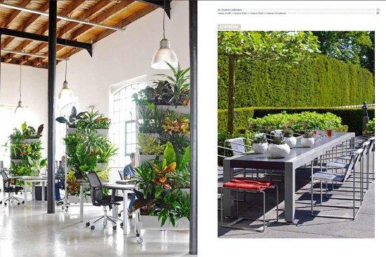 Boek - XL Plants Around