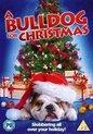 A Bulldog For Christmas (Import)