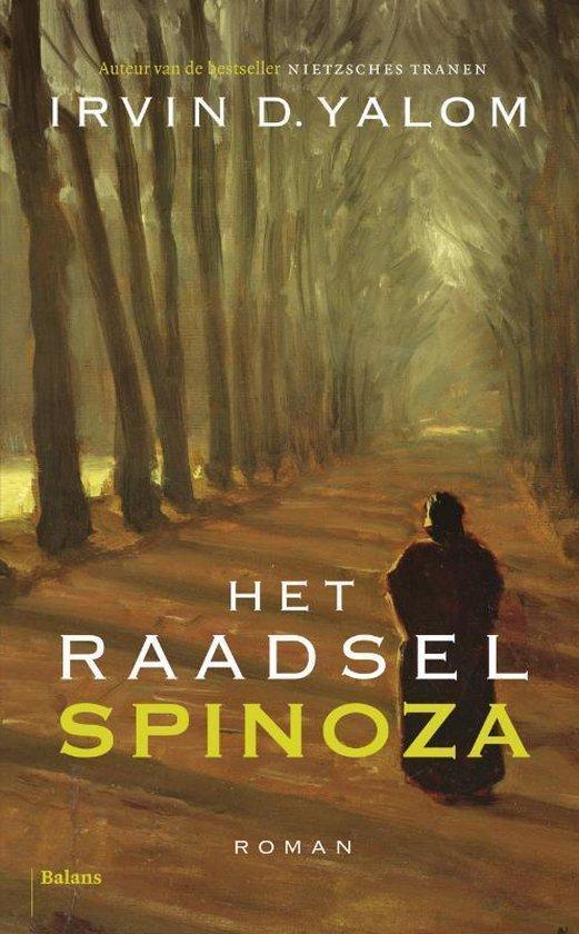 Boek cover Het raadsel Spinoza van I D Yalom (Onbekend)