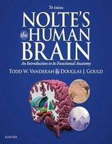 Nolte s The Human Brain E-Book