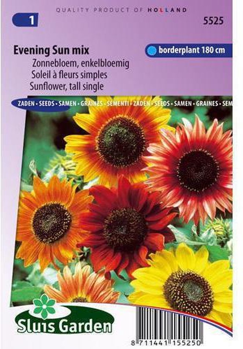 Sluis Garden- Zonnebloem Avondzon mix (Helianthus)