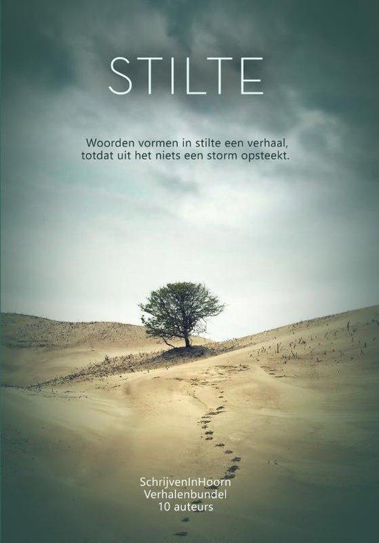 SchrijvenInHoorn 6 - Stilte versus storm - Lieve van den Berg | Readingchampions.org.uk