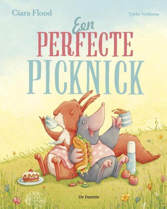 Een perfecte picknick - Ciara Flood |