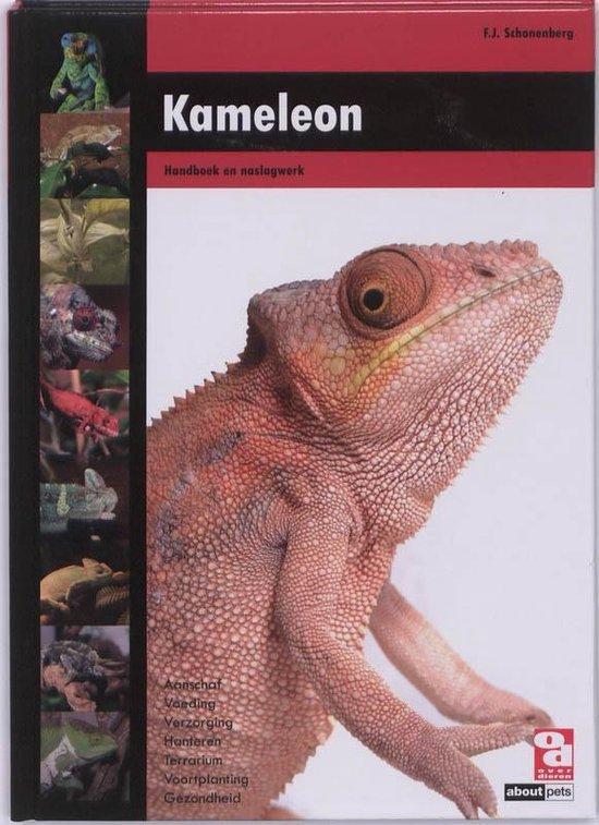 Over Dieren - Kameleon - F.J. Schonenberg |