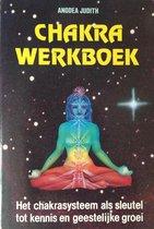 Chakra-werkboek