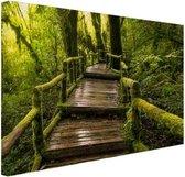 Mooi regenwoud en jungle Canvas 30x20 cm - klein - Foto print op Canvas schilderij (Wanddecoratie woonkamer / slaapkamer)