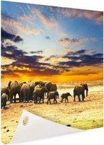 Kudde olifanten zonsondergang Tuinposter 120x80 cm - Tuindoek / Buitencanvas / Schilderijen voor buiten (tuin decoratie)