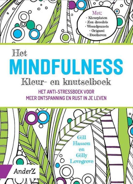 Het Mindfulness kleur- en knutselboek - Gil Hasson |
