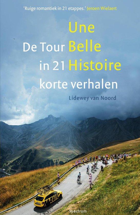Boek cover Une belle histoire van Lidewey van Noord (Paperback)