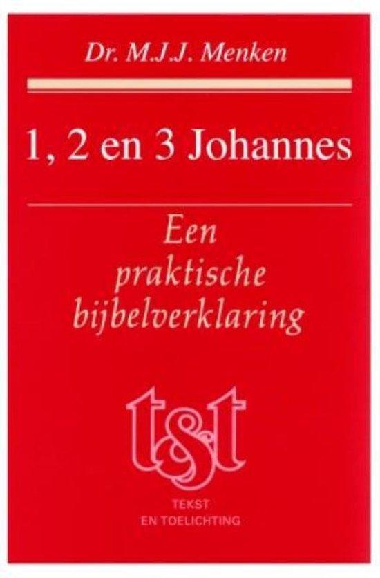 Cover van het boek '1 2 en 3 Johannes' van Corja Menken-Bekius en M.J.J. Menken