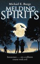 Omslag Melding Spirits
