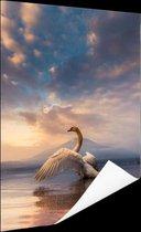 Opstijgende zwaan Poster 40x60 cm - Foto print op Poster (wanddecoratie)