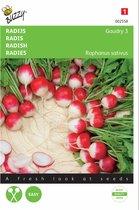 Radijs Gaudry - Raphanus sativus - set van 8 stuks