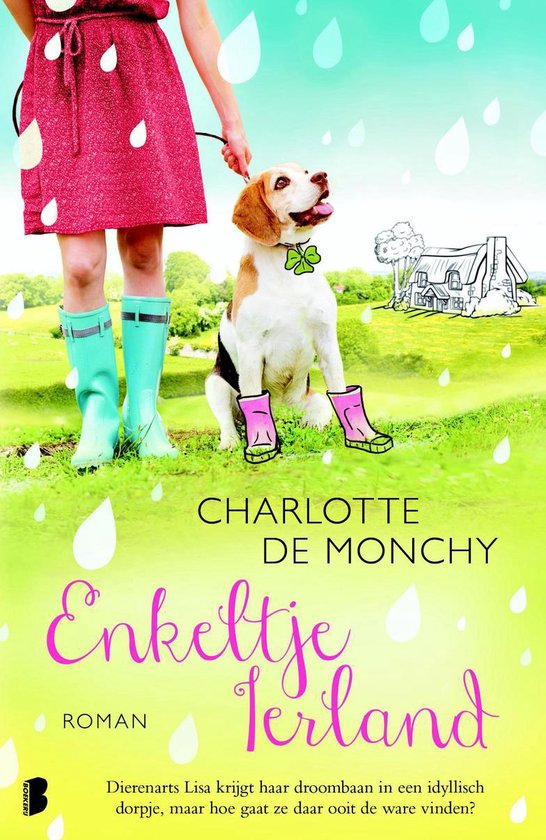 Enkeltje Ierland - Charlotte de Monchy pdf epub
