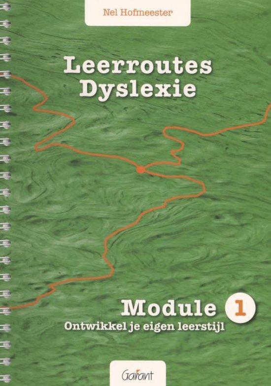 Leerroutes dyslexie Module 1: ontwikkel je eigen leerstijl - Nel Hofmeester  