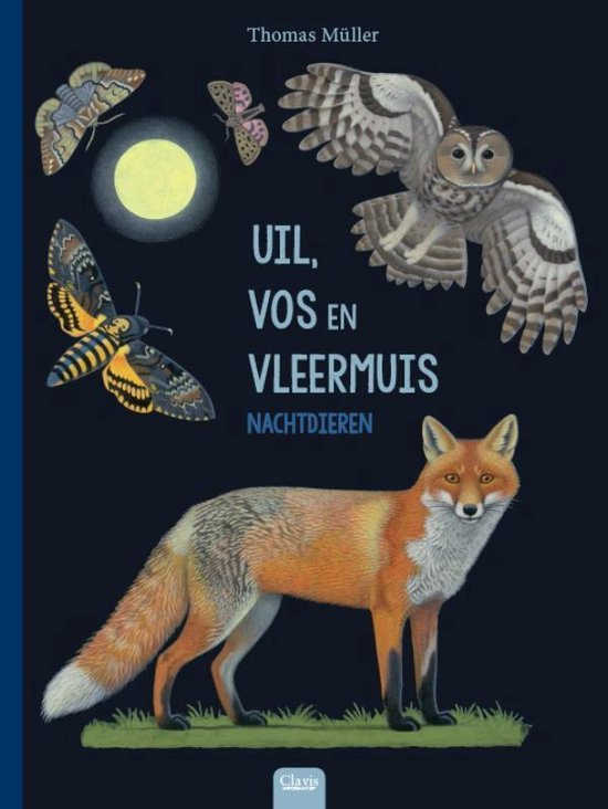Uil, vos en vleermuis - Thomas Müller   Fthsonline.com