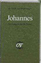 Commentaar op het Nieuwe Testament 3 - Johannes