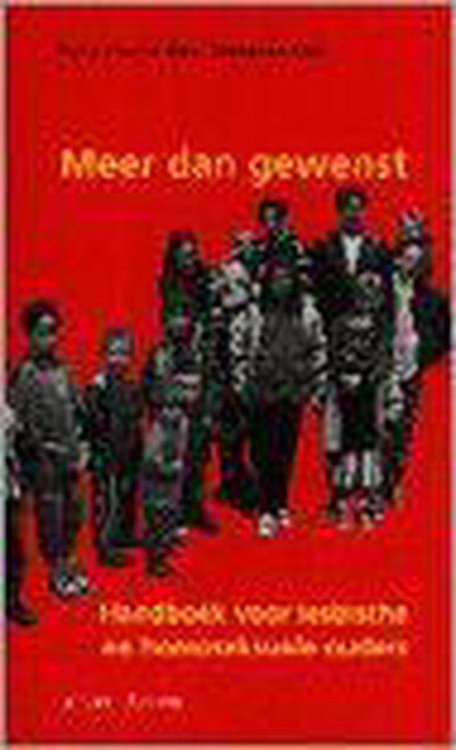 Meer Dan Gewenst - Hans Warmerdam |
