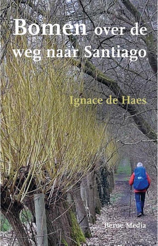 Bomen over de weg naar Santiago - Ignace de Haes |