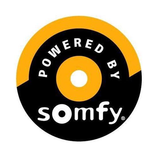 Somfy Soliris Uno zon- en windautomaat set
