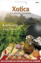 Buzzy® Xotica Kankong